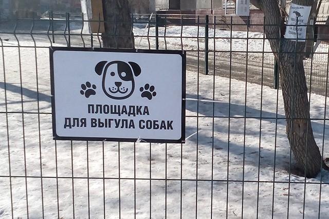 Жильцы многоэтажки установили площадку для выгула собак за свой счет