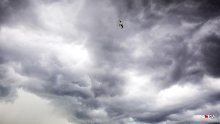 Экстренное предупреждение от МЧС: на Ярославль надвигаются сильная гроза и мощный ветер