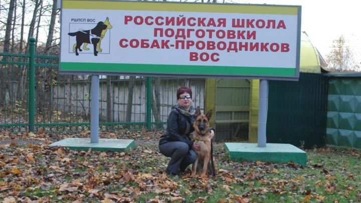 Незрячей сибирячке устроили скандал из-за собаки-поводыря