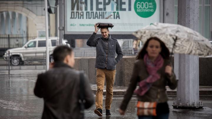Холод арктический: в Новосибирск идёт ветреная и дождливая погода