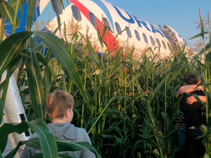 Фото с поля, где совершил вынужденную посадку самолет «Уральских авиалиний»