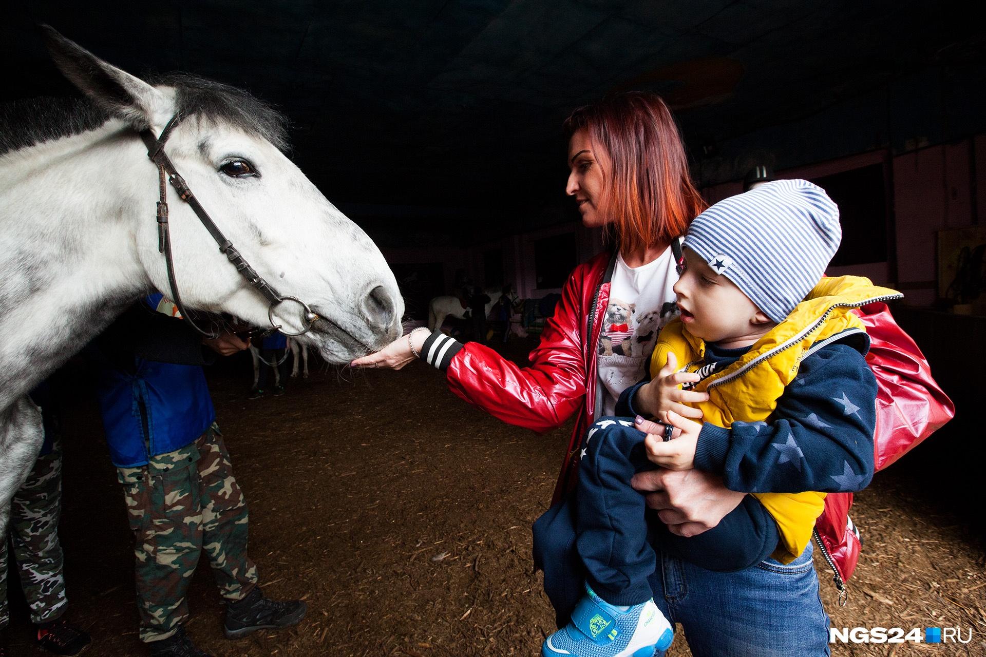 Кажется, лошади успокаивают не только ребенка, но и маму