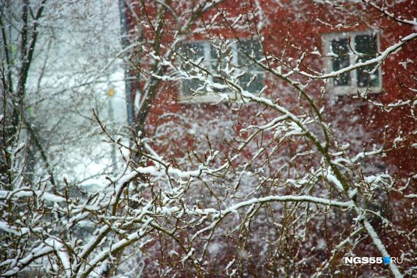 В ближайшие дни в нашем городе будет стоять хорошая зимняя погода