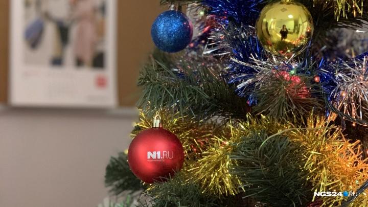 Праздник дома и на работе: какие ёлки ставят красноярцы и как украшают свои офисы и квартиры