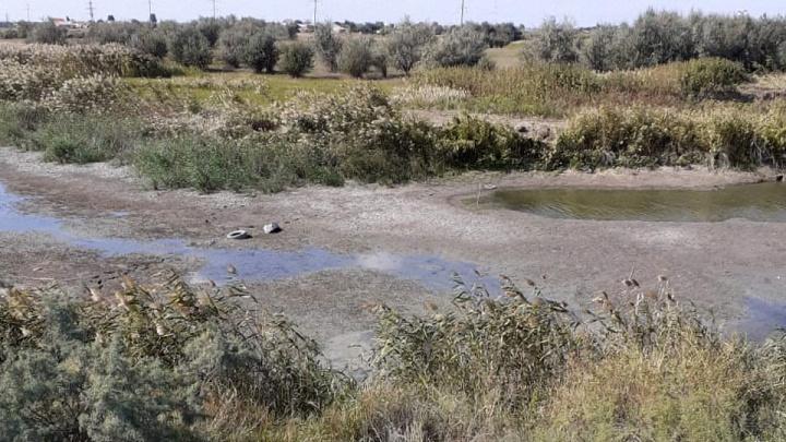 «Пару дней копали и бросили»: целый поселок в Волгоградской области оставили без воды