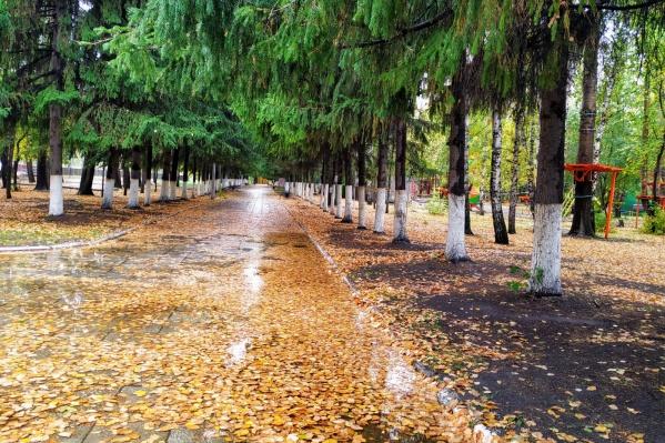 Последние дни сентября будут напоминать, что зима не за горами