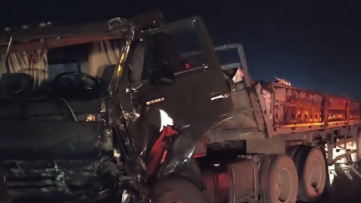 На трассе под Новосибирском столкнулись два грузовика— пострадал человек