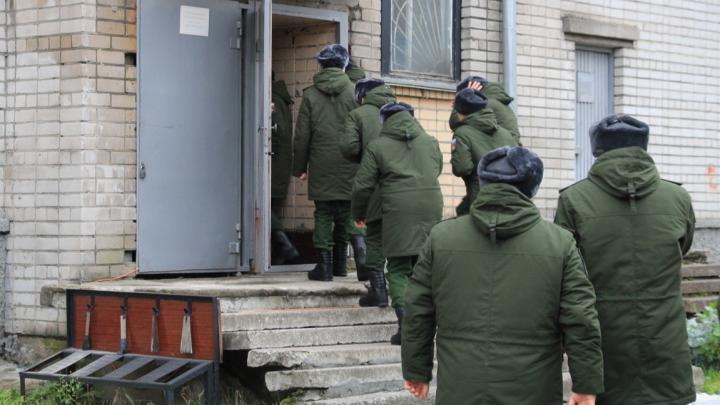 «Армия — это смешно. Но смех истерический»: журналист 29.RU — о «зелёном абсурде» и пользе службы