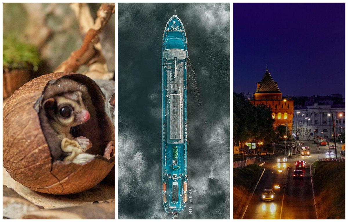 На этой неделе местные фотографы порадовали нас разнообразными снимками