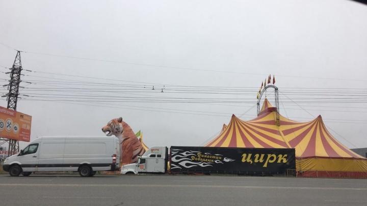 В Самарской области обнаружили опасный цирк шапито