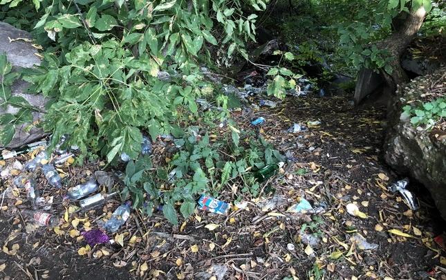 В Ярославле чиновников заставили убирать разбросанный под забором мусор