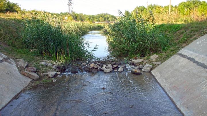 Около 400 миллионов рублей вложат в очистку русла Темерника в Ростове