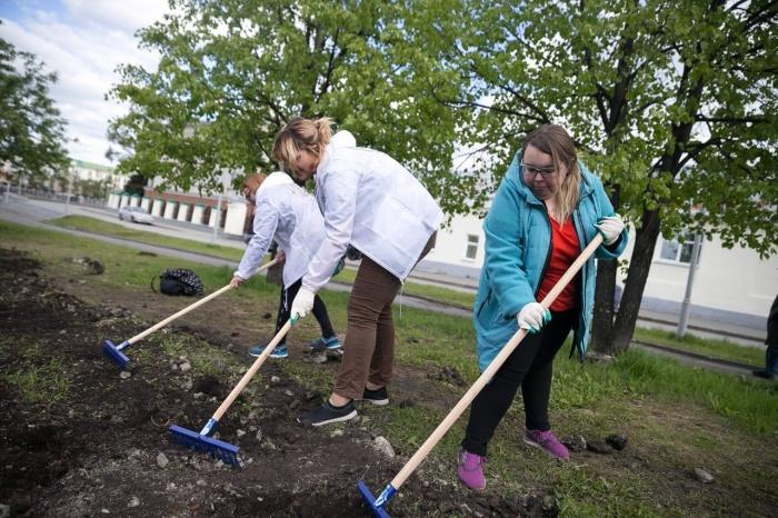 Волонтеры и активисты выровняли землю