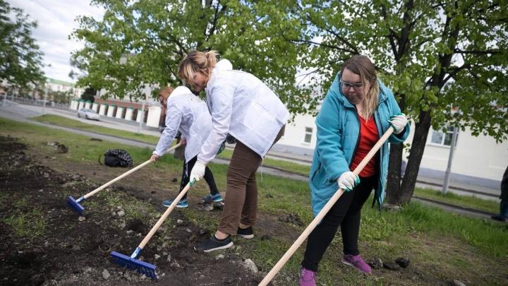 Посадили новую траву: Фонд святой Екатерины провел субботник в сквере у Театра драмы