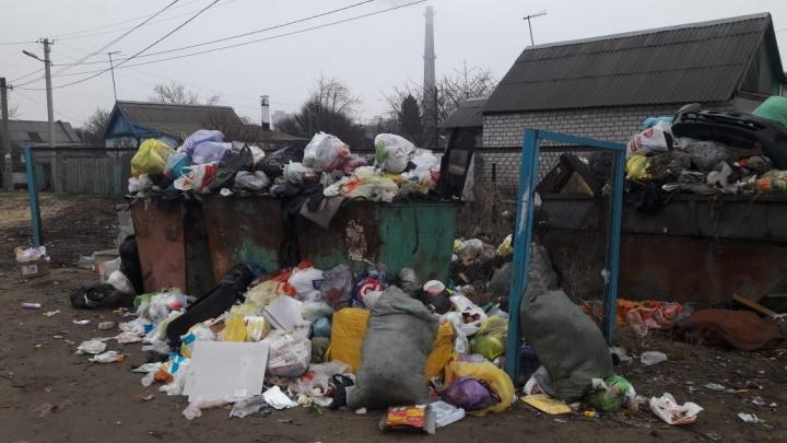 «Светлую Пасху встретим в мусоре»: регоператор на несколько недель забыл об уборке Краснослободска