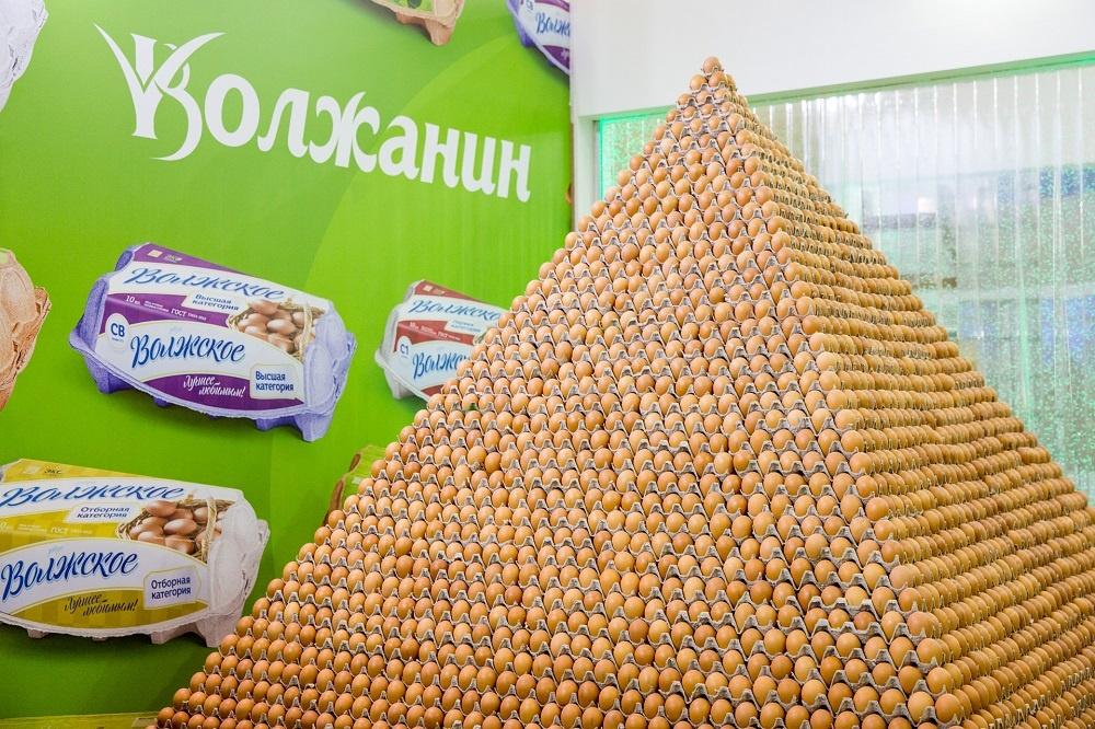 Ярославские сельхозпроизводители вошли в Книгу рекордов Гиннесса