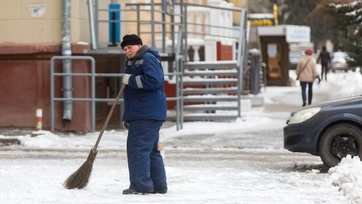 Снег и морозы — в дефиците: к концу первого зимнего месяца в Волгоград нагрянет резкое потепление