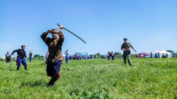 Прогулки хорьков, джигитовка и фестиваль раков:семь вечеров в Ростове