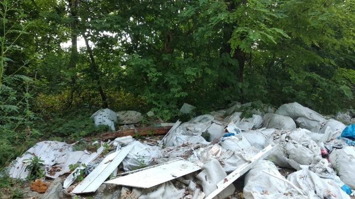 В «Чистом городе» и «Экоцентре» приняли более шести тысяч звонков по вопросам вывоза мусора