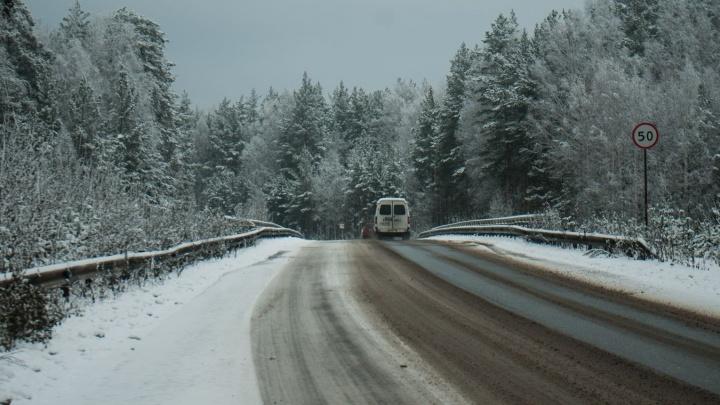Надвигается сильный снегопад: синоптики предупредили о непогоде в Свердловской области