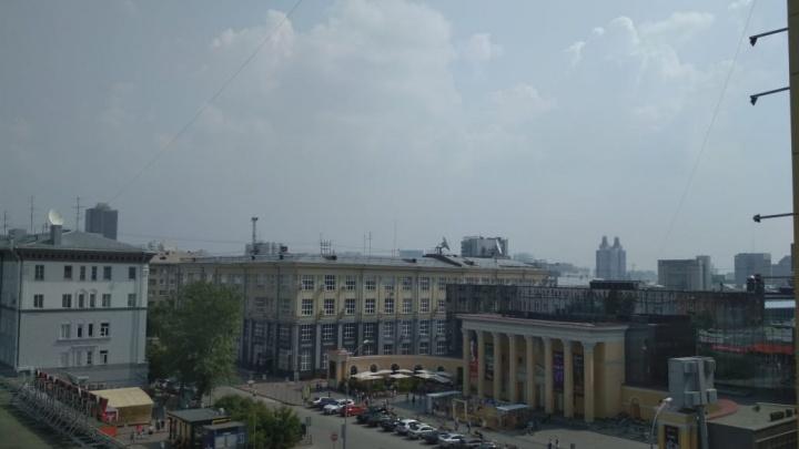 Новосибирцы снова заметили дымку и запах гари