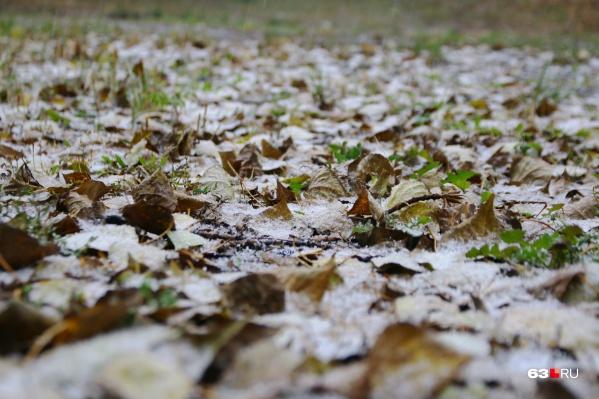 Самая низкая температура будет у поверхности почвы