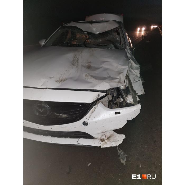 На трассе под Екатеринбургом новая Mazda, которая ехала из автосалона, сбила лося