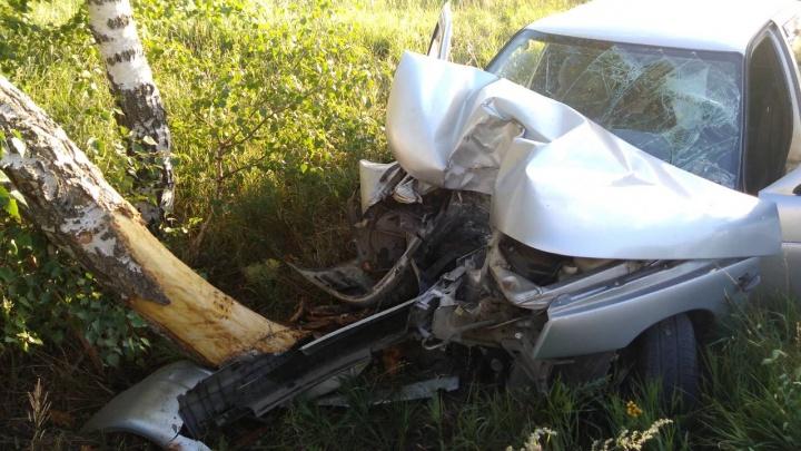 «Двенадцатая» наехала на дерево и загорелась: в Самарской области произошло смертельное ДТП