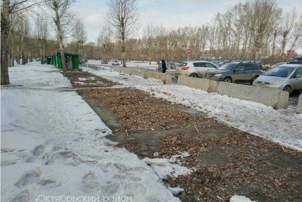 «Сначала сделаем павильоны в экостиле»: стало известно время появления велопроката на Татышеве