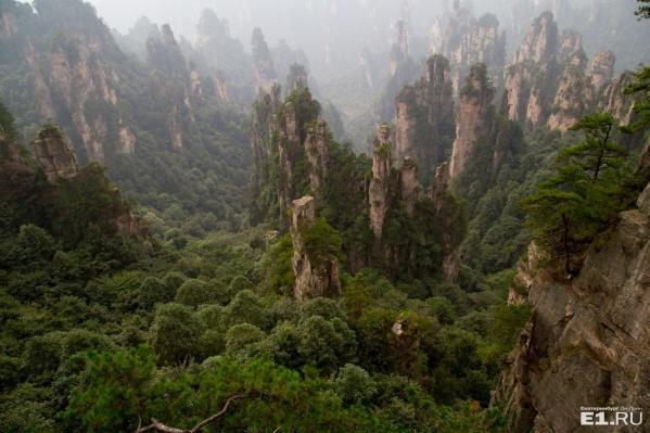 Вот они, те самые горы, вдохновившие создателей «Аватара»