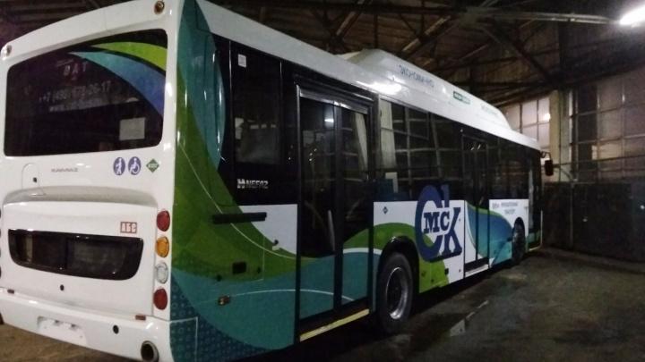 Новые большие муниципальные автобусы оформили фирменными наклейками