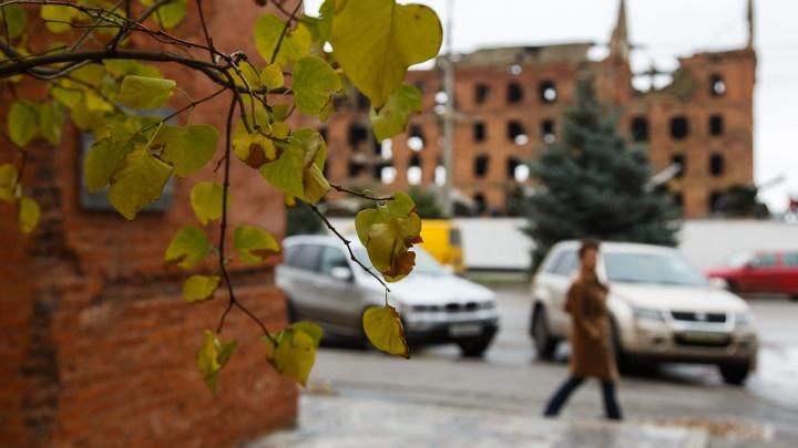 Волгоградскую область накроют сильный ветер и морозы до-14 ºС