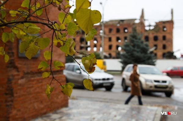 В Волгограде градусник застынет днём на нулевой отметке