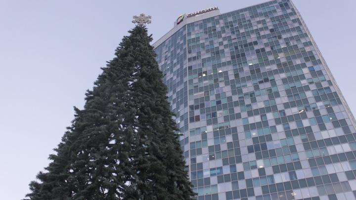 Раньше всех: на площади Маркса поставили огромную новогоднюю ёлку