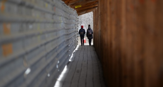 Защитить от групп смерти и беременности: куда жаловаться екатеринбуржцам, если дети в опасности