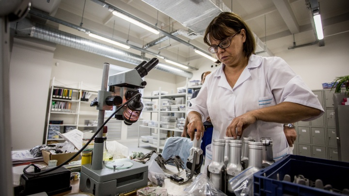 Сибирские учёные работают над технологией лечения переломов в невесомости
