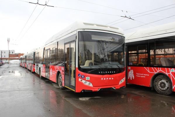 В Пермь приехали только 20 автобусов из 85