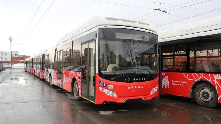 Мэрия Перми оштрафует Volgabus за нарушение сроков поставки автобусов