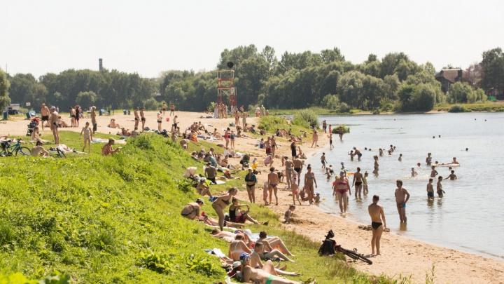 В воде паразиты: в Ярославле запретили купаться на двух пляжах из трёх