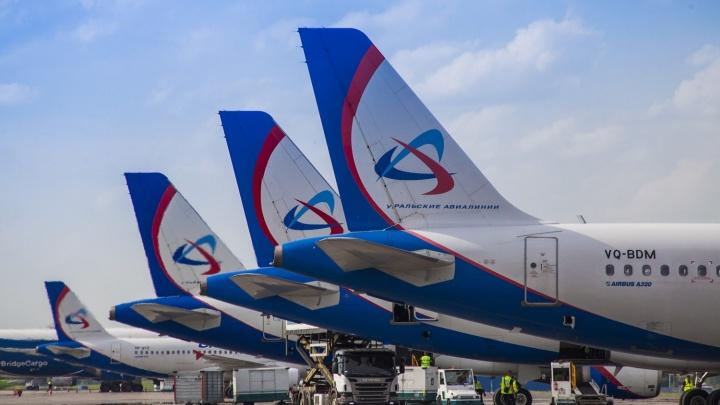 Планы путешествовать: «Уральские авиалинии» предлагают скидку до 50 % на билеты