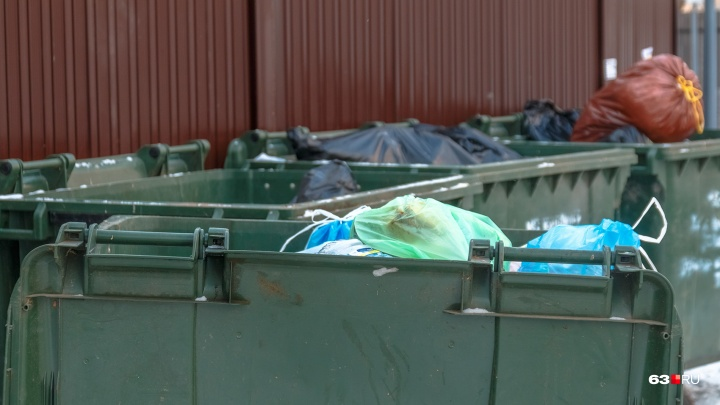 Азаров предложил брать деньги за вывоз мусора с дачников пять месяцев в году