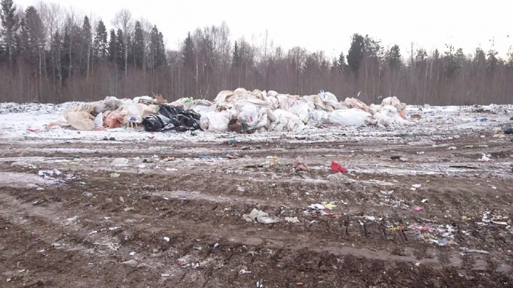 «Свалка будет выше ёлок»: жители Чернушки обсудили с властями проблему мусорного полигона