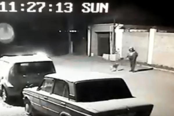 Молодой человек гулял с собакой, когда его сбили