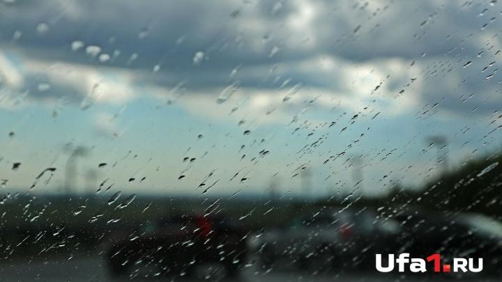 Немного тепла после дождей: какую погоду ждать в Башкирии