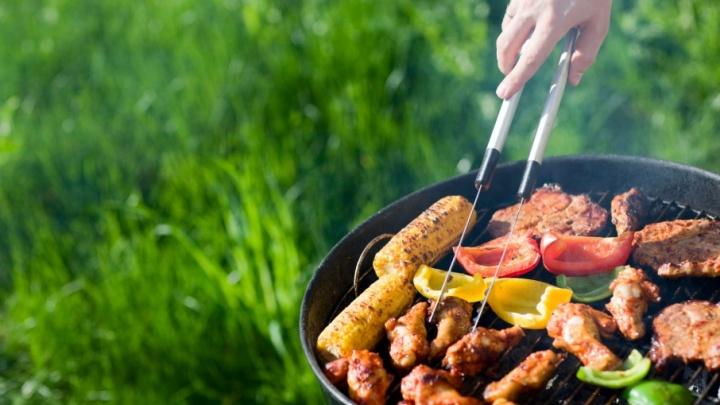 Все на пикник: выбираем вкусные продукты, новый мангал и маринад для идеального шашлыка