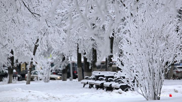 Белое безмолвие: зима по-своему украсила Уфу к Новому году