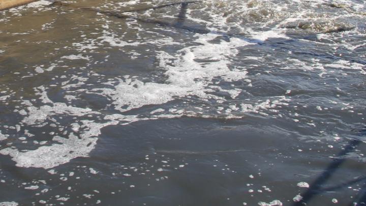 Молоко в воду: устьянского предпринимателя оштрафовали на 62 тысячи рублей за загрязнение реки