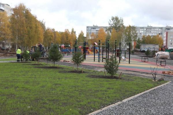Надо сказать, что деревья в парке всё-таки посажены, хоть и в небольшом количестве
