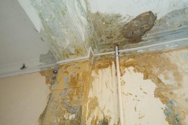 С потолка отвалилась штукатурка