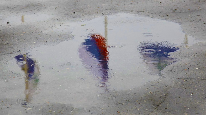 Погода Поморья против триколора: как часто администрации должны менять флаг, чтобы не было стыдно?